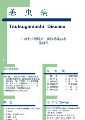传染病学课件04-03-恙虫病