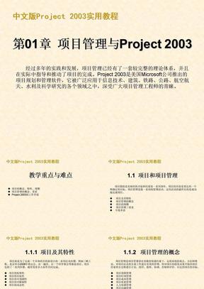 Project2003甘特图制作