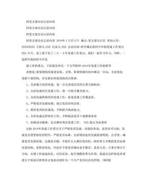 村党支部会议记录内容(新)