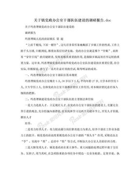 关于镇党政办公室干部队伍建设的调研报告.doc