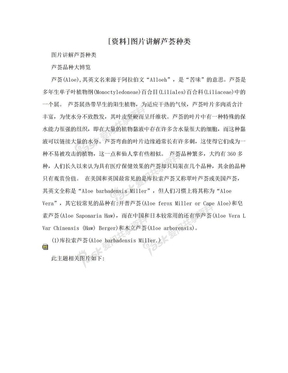[资料]图片讲解芦荟种类