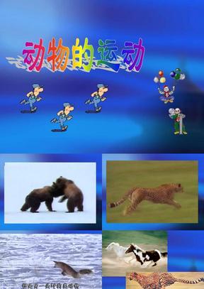 动物的运动(上课)