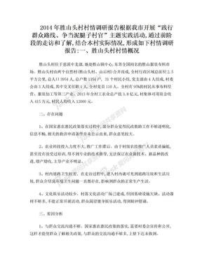 胜山头村大学生村官泥腿子村情调研报告