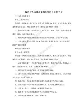 煤矿安全责任承诺书分管矿长责任书1