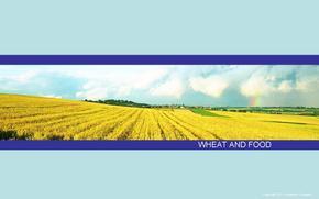 商务汇报、公司融资、工作汇报、年终总结ppt模板蓝色商务模版-面包出品