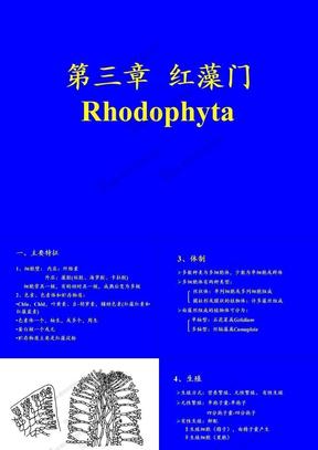 水生生物学1.3