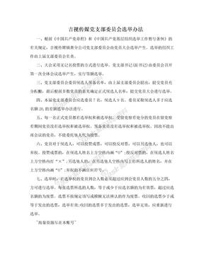 吉视传媒党支部委员会选举办法