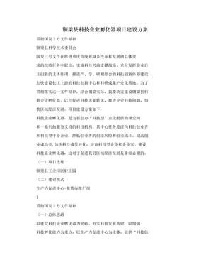 铜梁县科技企业孵化器项目建设方案