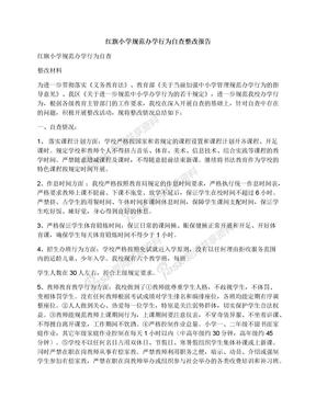 红旗小学规范办学行为自查整改报告