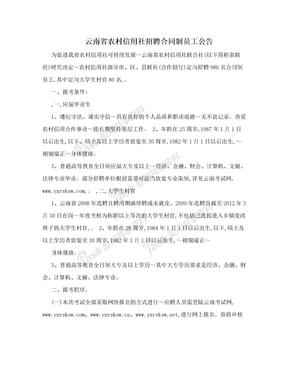 云南省农村信用社招聘合同制员工公告