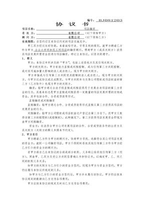 网站项目融资顾问协议