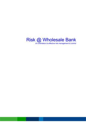 渣打银行风险管理手册