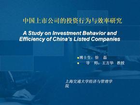 中国上市公司的投资行为与效率研究(预答辩)