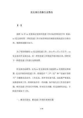 2018年党支部自查报告及整改