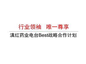 滇红药业电台Best战略合作计划  ppt课件
