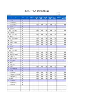 卫生中医事业单位收支表