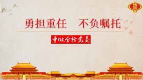 "【PPT课件】地税局""遵党章,学党章,讲党章""微党课课件"