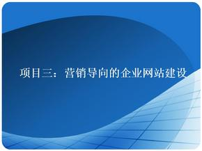 项目3 营销导向的企业网站建设