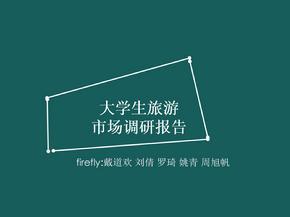 大学生旅游市场调研ppt(修改版)