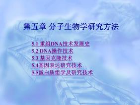 扬州大学《现代分子生物学》5-分子生物学研究方法