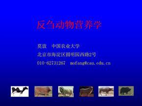 反刍动物营养学莫放1资料