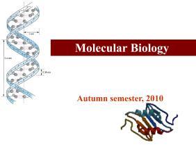 分子生物学导论(ppt)