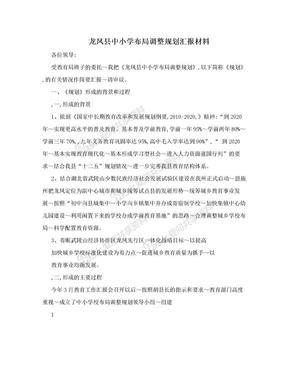 龙凤县中小学布局调整规划汇报材料