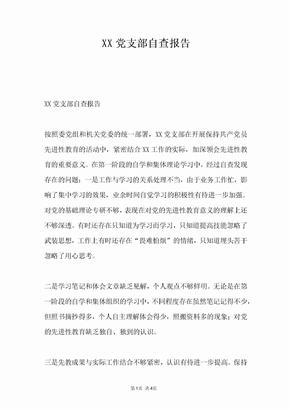 XX党支部自查报告