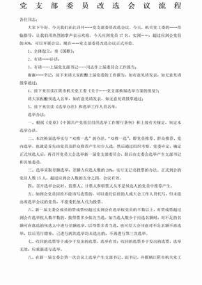 党支部改选会议流程.docx