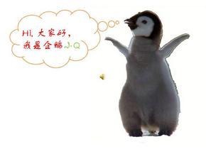 企鹅保护动物ppt模板_动物植物_ppt模板_实用文档