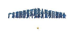 广东某项目招商方案